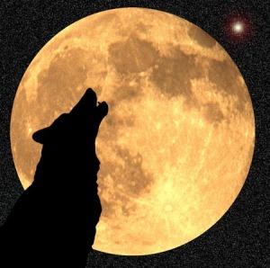 """""""moon pluto conjunction in virgo"""""""