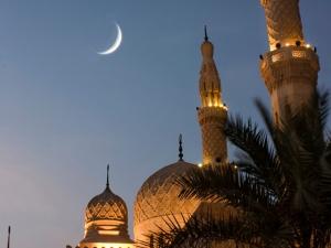 """new moon solar eclipse in sagittarius 2011"""