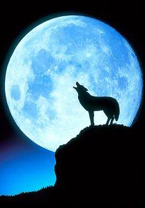 """full moon in scorpio"""